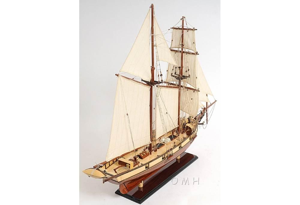 Baltimore Clipper Harvey Wooden Handbuilt Model Ship