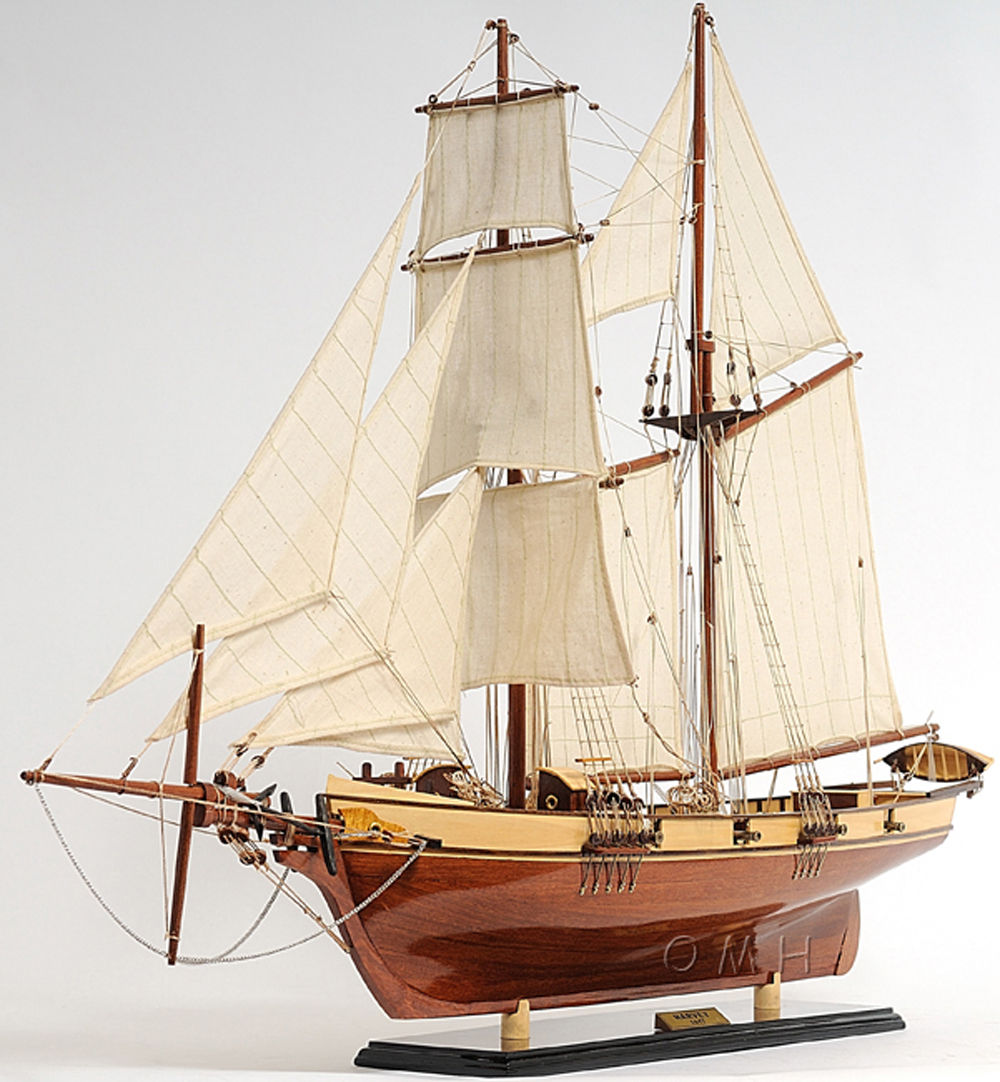 1800's Baltimore Clipper Harvey (1)
