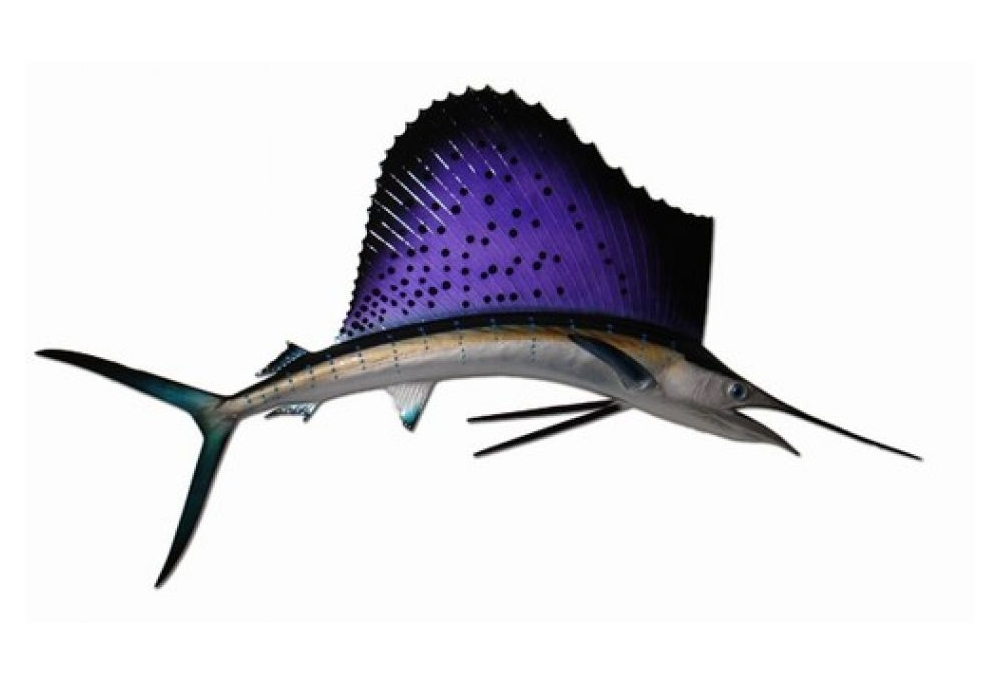 sailfish-sailfish-half-mount-fish-replica-42