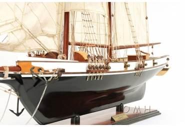 Baltimore Clipper Harvey 1800's